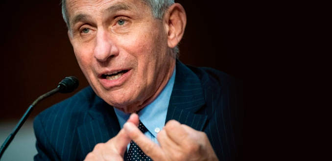 Dr. Fauci speaks during a Senate hearing